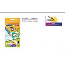 Набор цветных карандашей 12 цветов Аквакулер BIC